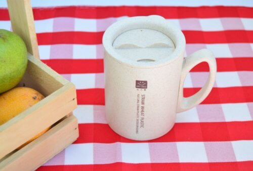 Vaso Biodegradable Beige - vasos moda